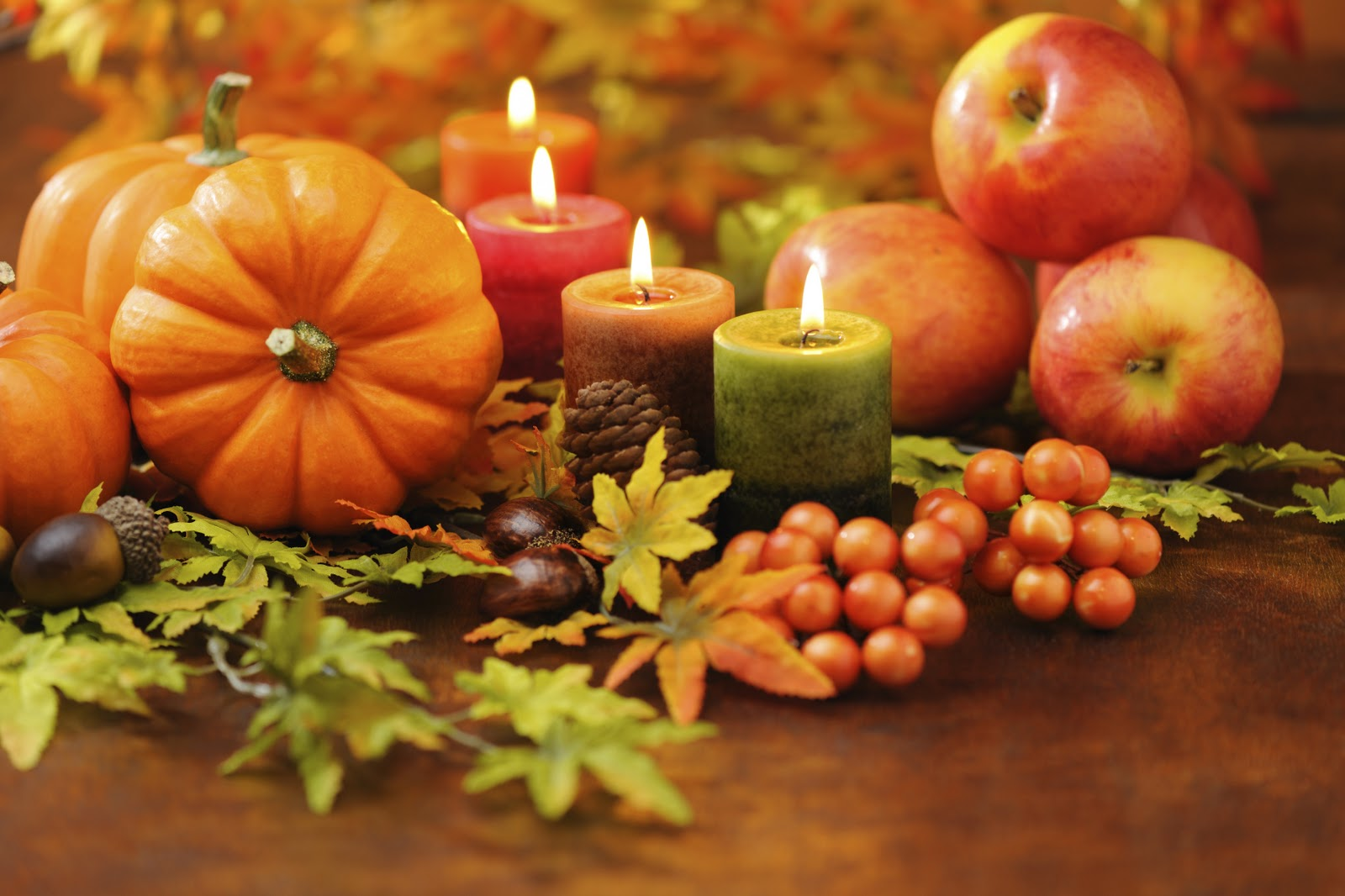 Happy Thanksgiving - Senior Home Care Sarasota
